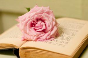old-book-pink-rose2-1
